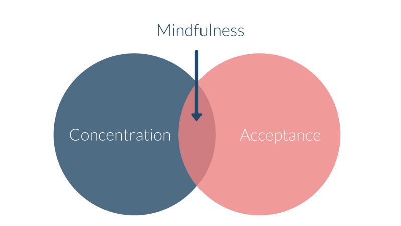 mindfulness_components
