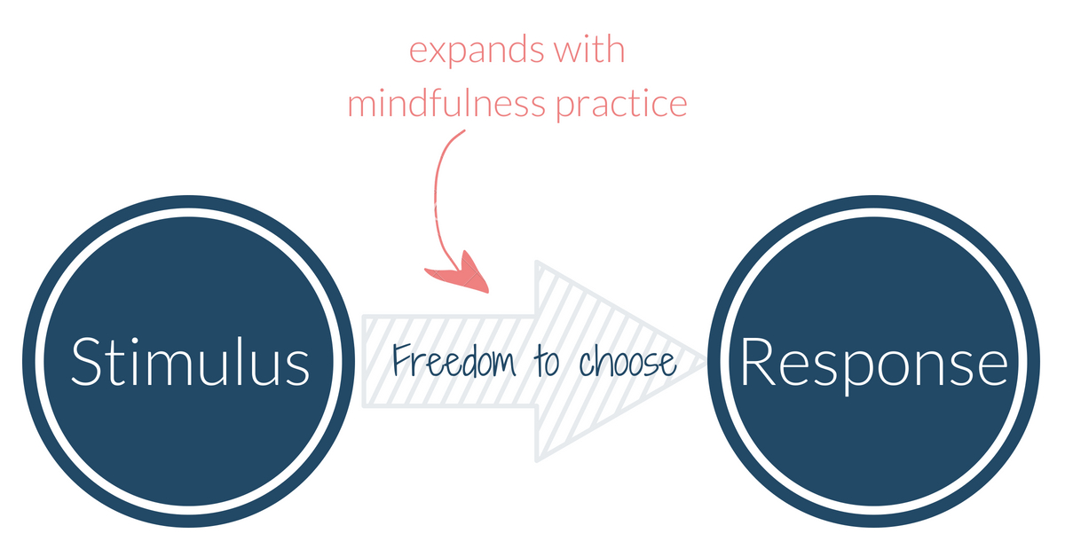 mindfulness_practice_stimulus_response